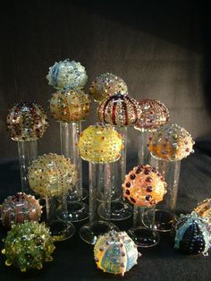 glass sea urchins by Laurie Young