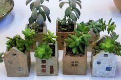 Succulent Planted House Pots: