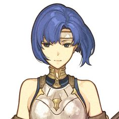 See more 'Fire Emblem' images on Know Your Meme! Character Bank, Character Creation, Character Concept, Character Design, Catria Fire Emblem, Character Illustration, Illustration Art, Fire Emblem Radiant Dawn, Robin