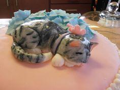 Bilderesultat for fondant cat