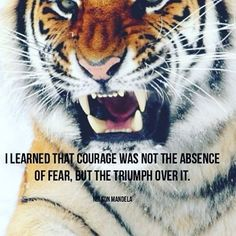 """480 Likes, 4 Comments - James Goll (@jamesgoll) on Instagram: """"""""I learned that courage was not the absence of fear, but the triumph over it."""" Quote by Nelson…"""""""