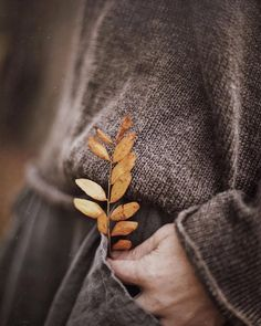 Autumn is finally here and I can't wait! Autumn Inspiration for Katharine Dever Autumn Day, Autumn Leaves, Winter, Autumn Poem, Deep Autumn, Hello Autumn, Lifestyle Fotografie, Fall Inspiration, Foto Blog