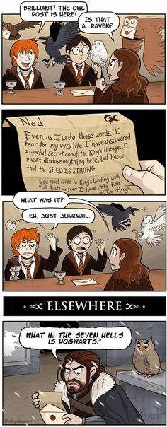 10 Funny Harry Potter Memes for Potterheads #HarryPotter #HarryPotterMemes #GameOfThrones