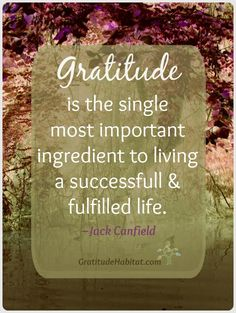 Gratitude is the single most important ingredient to living a successful and fulfilled life.-#Gratitude #quote