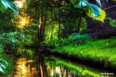 #Natur 2015 im #Spreewald entdecken? Dann bitte  www.hotel-stern-werben.de