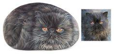 Una dolce gattina persiana ritratta su pietra dall'artista Roberto Rizzo!