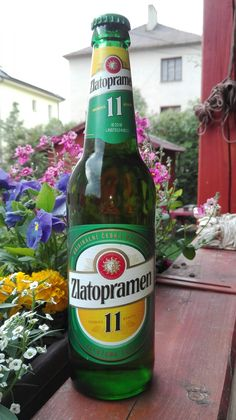 Zlatopramen 11. Czech beer.