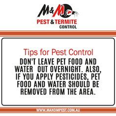 General Pest Control Termite Inspections