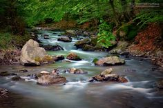 Valea Finisului, satul Finis | Bihor in imagini Waterfall, River, Outdoor, Outdoors, Waterfalls, Outdoor Games, The Great Outdoors, Rivers
