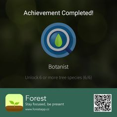 Forest App, Stay Focused, Focus On Yourself, Christmas Diy, Presents, Study, Animals, Travel, Human Drawing