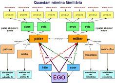 quaedam nomina familiaria