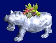 Hippo- Luwanga Hippo Planter