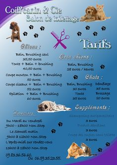 1000 images about toilettage de chiens on pinterest pet grooming dog grooming and shih tzu - Le salon de toilettage petshop ...