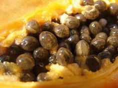 Papaya Seeds As Natural Male Birth Control Home Remedies For Acne, Natural Health Remedies, Herbal Remedies, Healthy Tips, How To Stay Healthy, Mouth Watering Food, Raw Food Recipes, Health And Wellness, Gastronomia