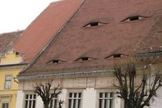 Discover Sibiu's Houses with Eyes in Sibiu, Romania: Something's watching you. Sibiu Romania, Adventure Is Out There, To Go, Houses, River, Eyes, World, Places, Outdoor Decor