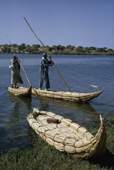 Fishermen pole shoreward in canoe shaped boats of papyrus reeds. Lake Chad, Niger.