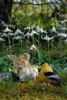 Handcrafted one-of-a-kind soft sculpture Faeries Needle Felted Animals, Felt Animals, Needle Felting, Fable, Felt Fairy, Wow Art, Flower Fairies, Fairy Art, Fairy Dolls