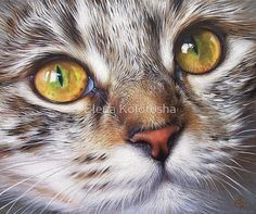 Tabby Look Painting by Elena Kolotusha - Tabby Look Fine Art Prints and Posters for Sale Art Scratchboard, Cat Art Print, Cat Drawing, Cat Face, Beautiful Cats, Animal Paintings, Pet Birds, Cats And Kittens, Cute Cats