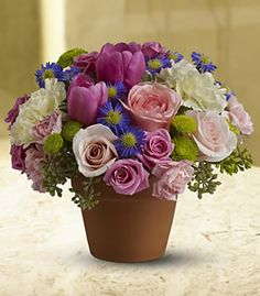 For a country-style Mom's day gift with a special, heartfelt beauty, send this pretty medley of fresh flowers such as roses, tulips and more in shades of blushing pink, pure white, blue and green, delivered in a real clay pot. FlowerPetal.com