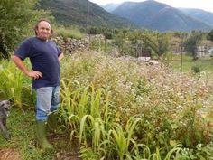 Un SEED SAVER - COLTIVATORE CUSTODE, crea un orto conservativo biologico per preservare la biodiversità dei semi antichi.  Cesare Sertore e il suo orto di agro biodiversità alpina con semi di ProSpecieRara
