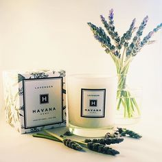 Try our calming lavender today.  #candles #lavender #fragrance #soy #soycandles #perfume #madeinaustralia