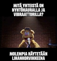 Puns, Comedy, Teddy Bear, Humor, Clean Puns, Teddy Bears, Comedy Theater, Funny Puns, Word Games