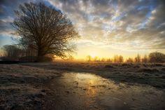 Sunrise by Max Ellis on 500px  Bushy Park, London area.