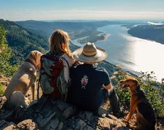 Traveling with dogs pushes us to do more things outside. We might not be able to go to every location on our list, but instead, we find new places away from crowds of people.