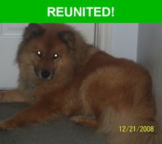 Great news! Happy to report that Buddy has been reunited and is now home safe and sound! :)