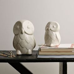 Ceramic Owls from @west elm for Eric's nightstand because he is so wise ;)