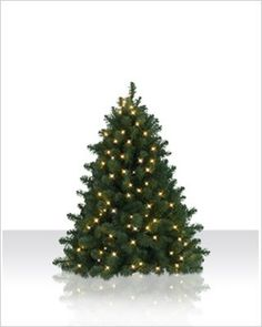 4 ft. Bethlehem Fir Artificial Christmas Tree - clear lights [Free Shipping] $69.00 (save $83.90)