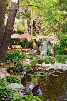 Dreamy backyards...A koi pond says serenity when situated next to a seating area shaded by trees and multiple umbrellas in this Twin Cities yard. Click to see more beautiful backyards!