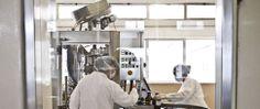 Portugal destaca-se em áreas científicas na União Europeia