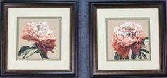 Heirloom Rose 1&2