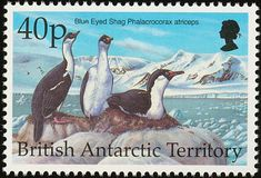 Antarctic Shag stamps - mainly images - gallery format