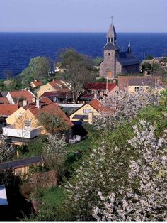 How Bornholm was reinvented as Denmark's 'green island' - Europe - Travel - The Independent