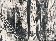 LITHOGRAPHS - Holly Mills