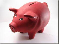 Le guide du Radin: 50 Astuces pour vivre économiquement