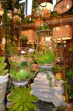 Succulents are big again this year and we have the most realistic-looking succulents on the market!