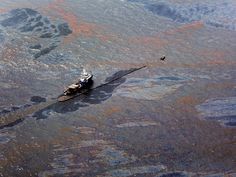 Scientists have found a 10 million gallon 'bath mat' of oil on the floor of the Gulf of Mexico   Business Insider   Please click to read the full article to learn how BP's oil spill continues to screw over the Gulf, the sea life and the residents in the area. 2/8
