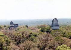 En Tikal encontramos las reliquias de una de las ciudades más grande de las culturas precolombinas. Fueron los mayas los que construyeron Tikal y en ciertas ocasiones desde esta metrópoli dominaron toda su civilización.