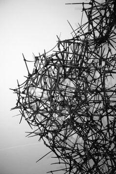 cable tie sculpture | James Norton