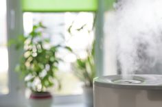 Not sure which humidifier to purchase? We clarify the options.