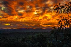 Fire in the sky @ Mabalingwe Game Reserve, Sunrises, Storms, Places Ive Been, African, The Incredibles, Fire, Clouds, Sky