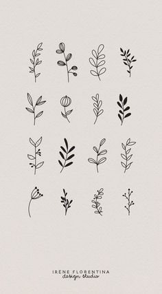 This bundle includes 50 unique botanical floral illustrations which you can use . - Drawings - This bundle includes 50 unique botanical floral illustrations which you can use for logos, invitati - Bullet Journal Art, Bullet Journal Ideas Pages, Bullet Journal Inspiration, Illustration Botanique, Illustration Blume, Flamingo Illustration, Illustration Flower, Pattern Illustration, Floral Drawing