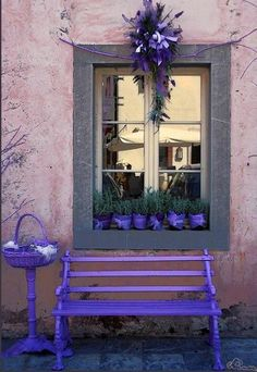 Purple bench via Carol's Country Sunshine on Facebook