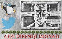 Gezi Sürecinde Sosyal Medya Dezenformasyonları