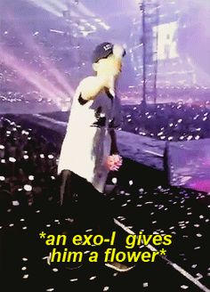 Chen felt so touched after an exo-l gave him a flower, he really deserves a garden. (1/3)