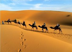 Spent the best private tours with your family in #MoroccoPrivateTours.Book a trip to Morocco and enjoy a lot. Check out more @ http://www.camelsafaries.net