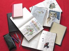 Natural Sketching Tools -- a comprhensive list from John Muir Laws